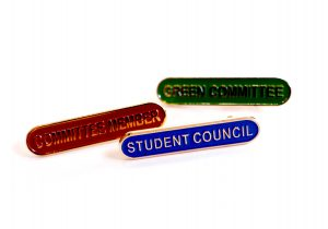 school-lapel-pins